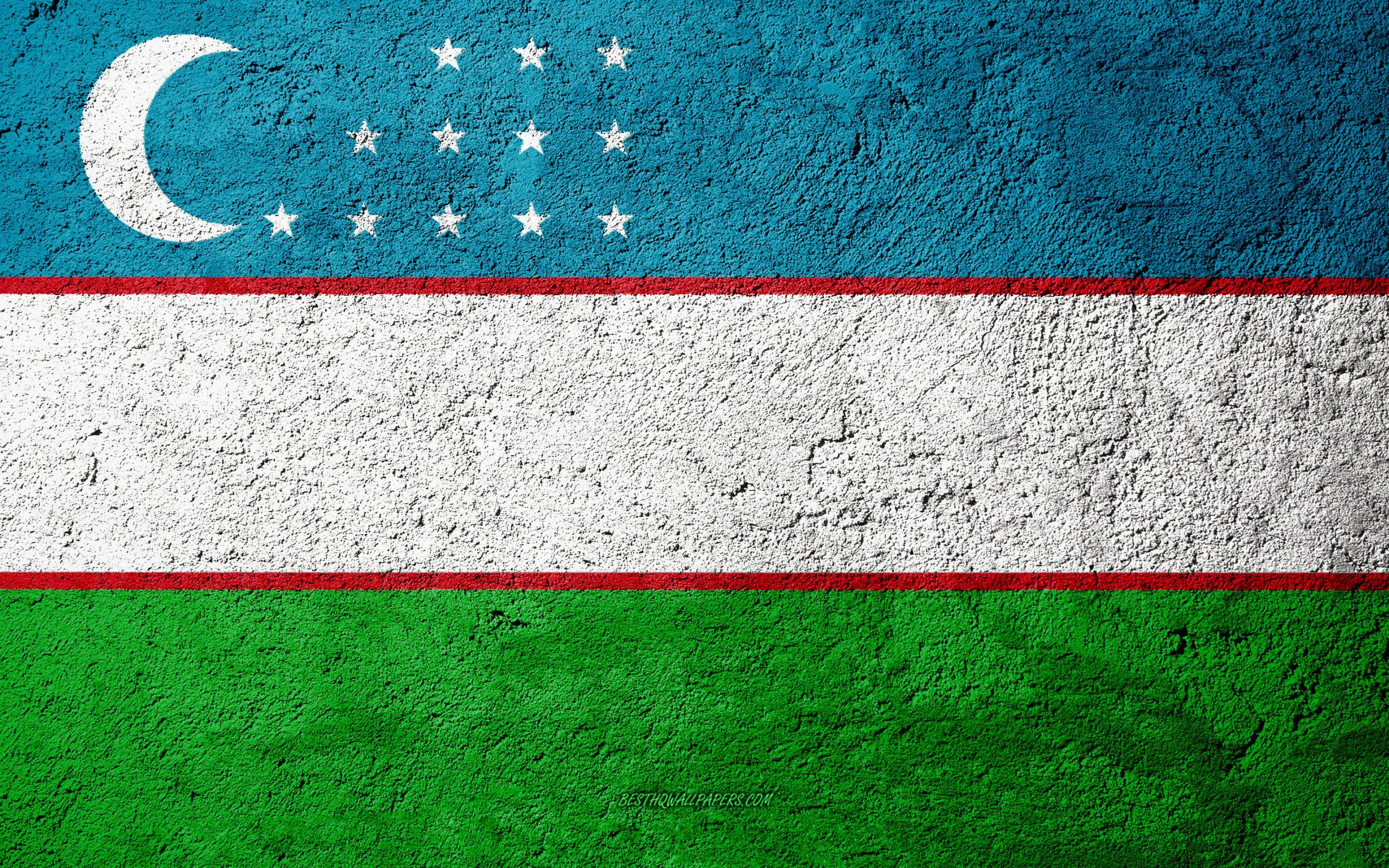 Узбекистан может стать крупнейшим государством-членом ЕАЭС после России